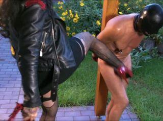 """Vorschaubild vom Privatporno mit dem Titel """"Brutal Bitch – Lektionen einer Lady"""""""