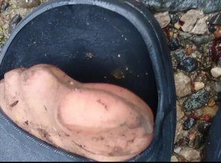 """Vorschaubild vom Privatporno mit dem Titel """"Dreckige Nylonfüsse ** Pedal Pumping **"""""""