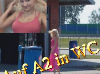 """Vorschaubild vom Privatporno mit dem Titel """"BLOWJOB AUF A2 IN WC"""""""
