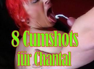 """Vorschaubild vom Privatporno mit dem Titel """"8 Cumshots für Chantal ( Best off )"""""""