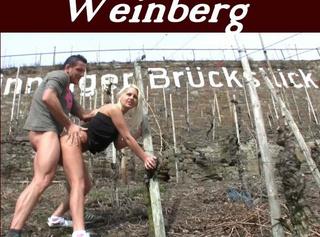 """Vorschaubild vom Privatporno mit dem Titel """"2. Teil **Im Weinberg abgefickt !** feat. Callboy Klaus"""""""