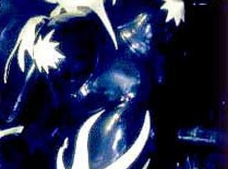 """Vorschaubild vom Privatporno mit dem Titel """"Das Gummigeile Gummi-Phantom"""""""
